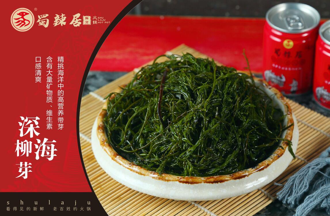 成都火锅加盟全国 这是精品中的精品插图